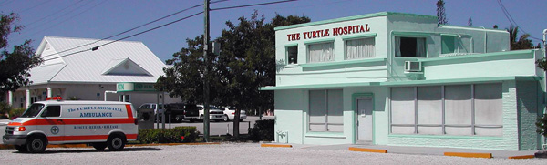 Turtle Hospital and Ambulance