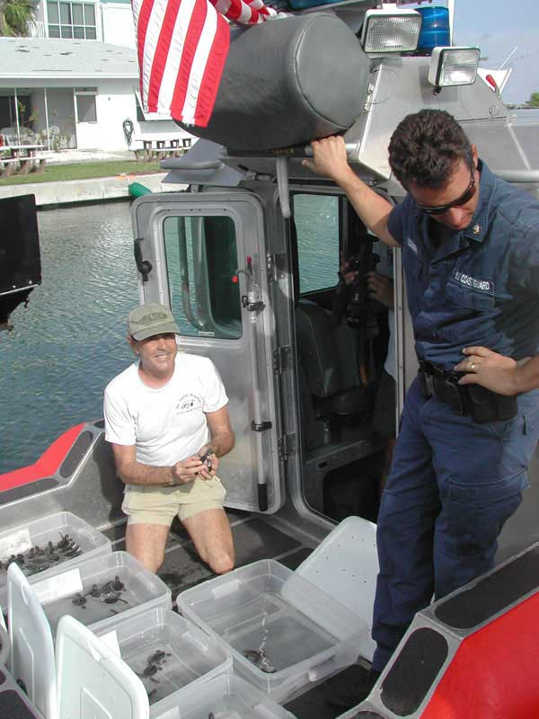 Ritchie Loads hatchlings on the Coast Guard Boat