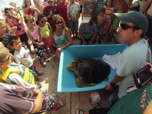 Hospital Manager Bette and Turtle Rehabber Matt educating our next generation about sea turtles