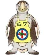 pine tyme tour de turtles 67