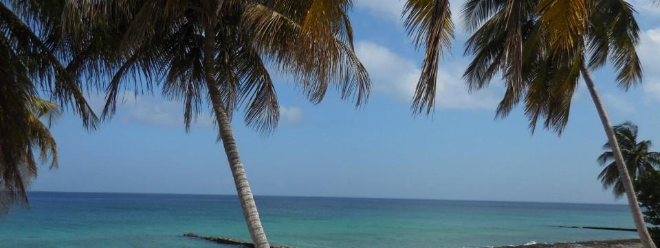 beach scene cuba