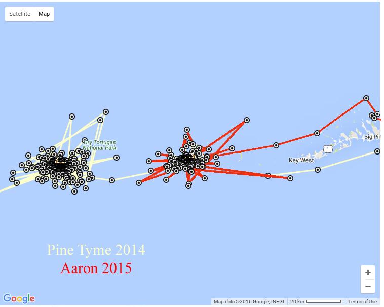 Pine Tyme Aaron Map